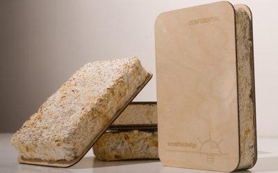 Pilze – Bausteine der Zukunft